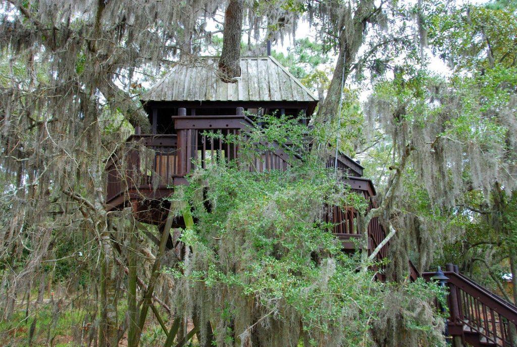Treehouses hotels